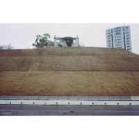 La maison sur la colline, Jeanne Fredac © Adagp, Paris, 2020