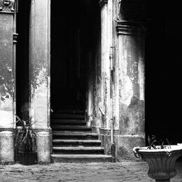 Prince noir, Jeanne Fredac © Adagp, Paris, 2021